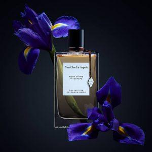 Bois D'Iris – 75 ml (Collection extraordinaire)